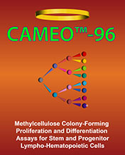 CAMEO-96 methylcellulose colony-forming unit CFU assay for proliferation and differentiation using ATP bioluminescence