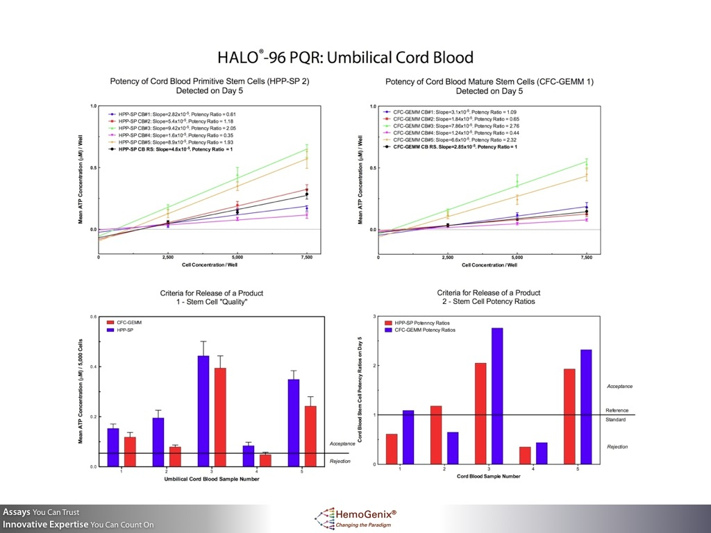 HALO-Potency: How Stem Cell Potency, Quality and Release Criteria are Determined Umbilical Cord Blood