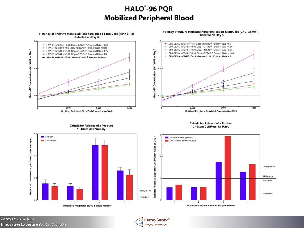 HALO-Potency: How Stem Cell Potency, Quality and Release Criteria are Determined for mobilized peripheral blood
